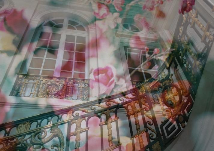 Claire Lacoste © 2014